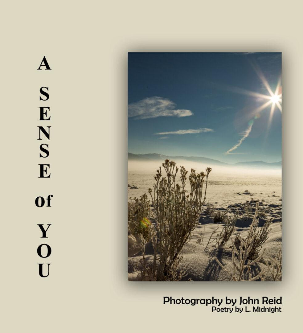 photography book cover EBOOK